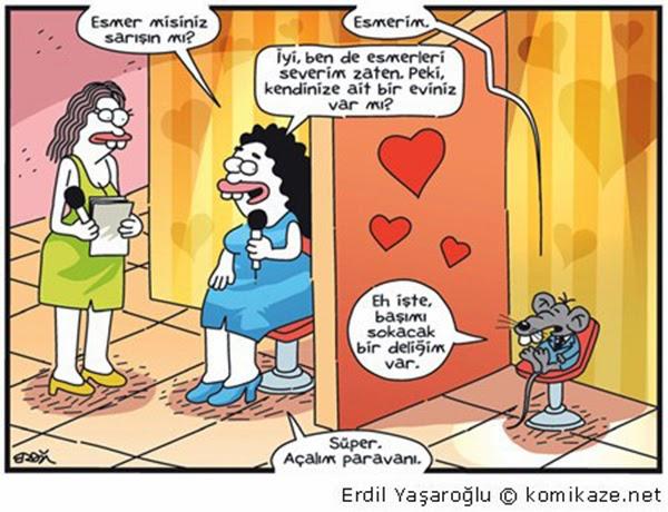 Evlenme Karikatürü