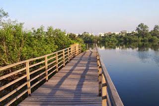 taman wisata alam mangrove angke kapuk jakarta
