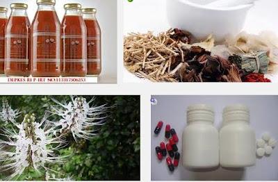 Perbandingan Obat Herbal vs Obat Kimiawi