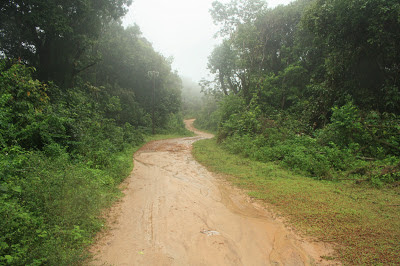 Coorg places