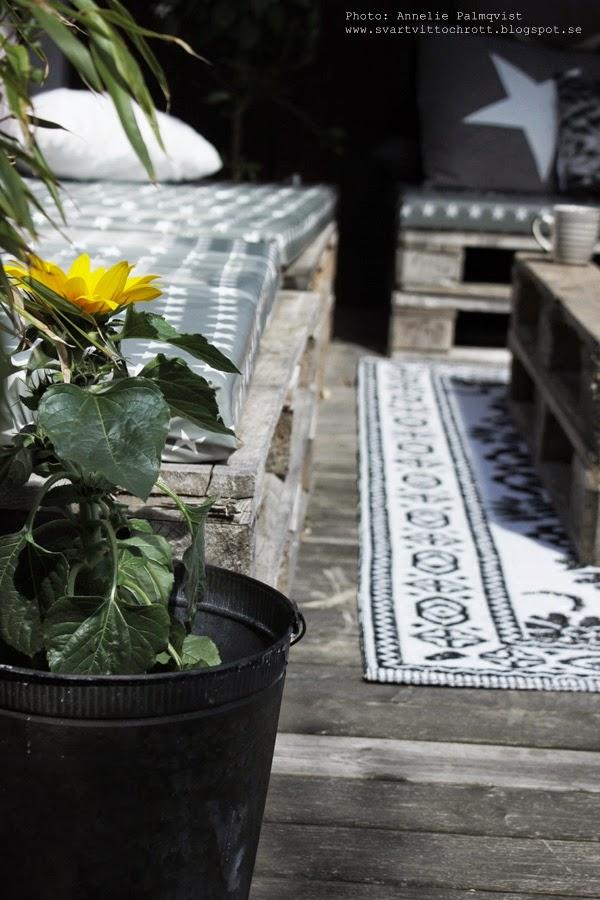 altan, altaner, uteplats, uteplatser, utemöbler av lastpallar, lastpall, lastpallen, utemöbel, möbler av lastpall, möbel, solros, solrosor, bambu