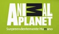 http://animalplanet.discoverybrasil.uol.com.br/ciclovivo-governo-de-sp-lanca-campanha-para-reduzir-abandono-de-pets/