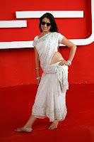 hot,sexy, Lakshmi Rai, navel show, backless blouse saree,
