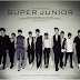 Super Junior - No Other (너 같은 사람 또 없어) MP3 + Hangul, Romanization, English Lyrics