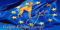 SÓLO NOS QUEDA EUROPA PARA ERRADICAR EL MALTRATO ANIMAL