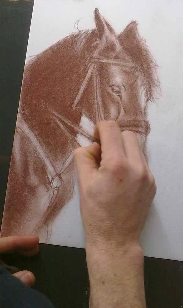 proceso de sombreado de una cabeza de caballo con sanguina