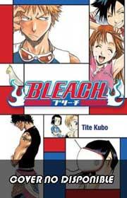 Ver Descargar Bleach Manga Tomo 65