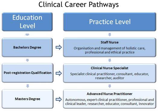 Nurse Practitioner Education