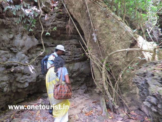 trekk for limestone caves , baratang , andaman
