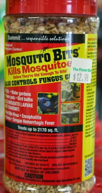 How To Get Rid Of Mosquitoes In Your Yard Naturally