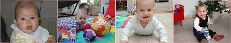 Alma 4-8 måneder
