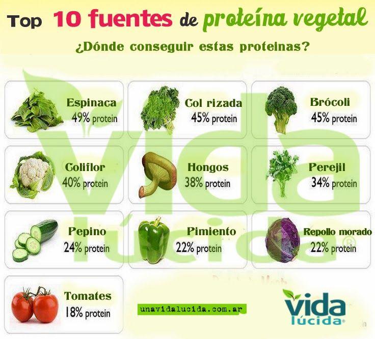 Cna 20 alimentos vegetales ricos en prote nas - Alimentos vegetales ricos en proteinas ...