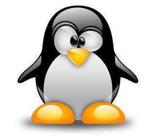 Cómo desinstalar kernels antiguos en Ubuntu, eliminar núcleos antiguos ubuntu