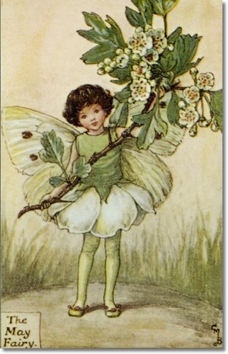 cicely-mary-barker-flower-fairies-of-the-spring-the-may-fairy.jpg