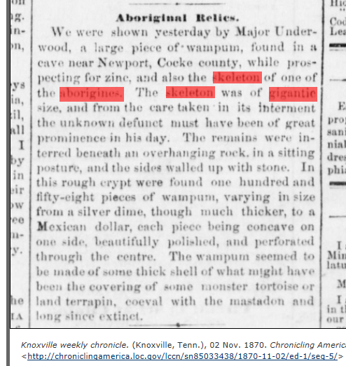 1870.11.02 - Knoxville Weekly Chronicle