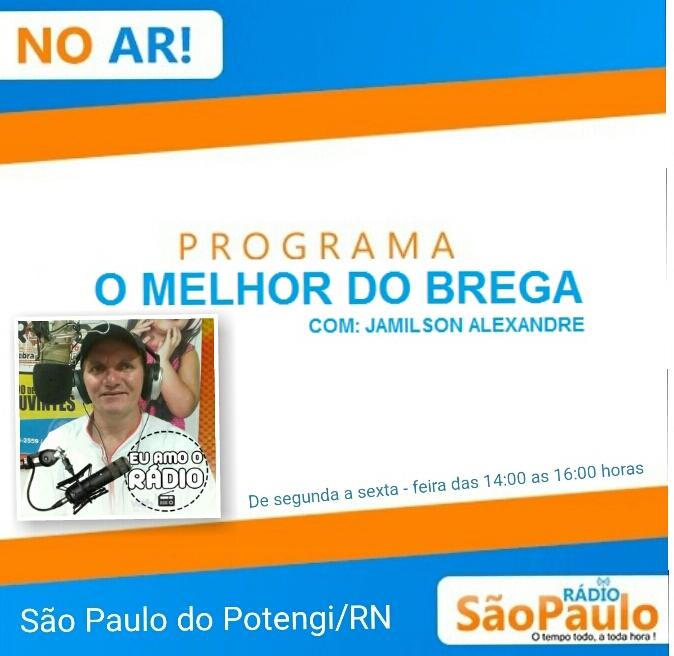 O MELHOR DO BREGA