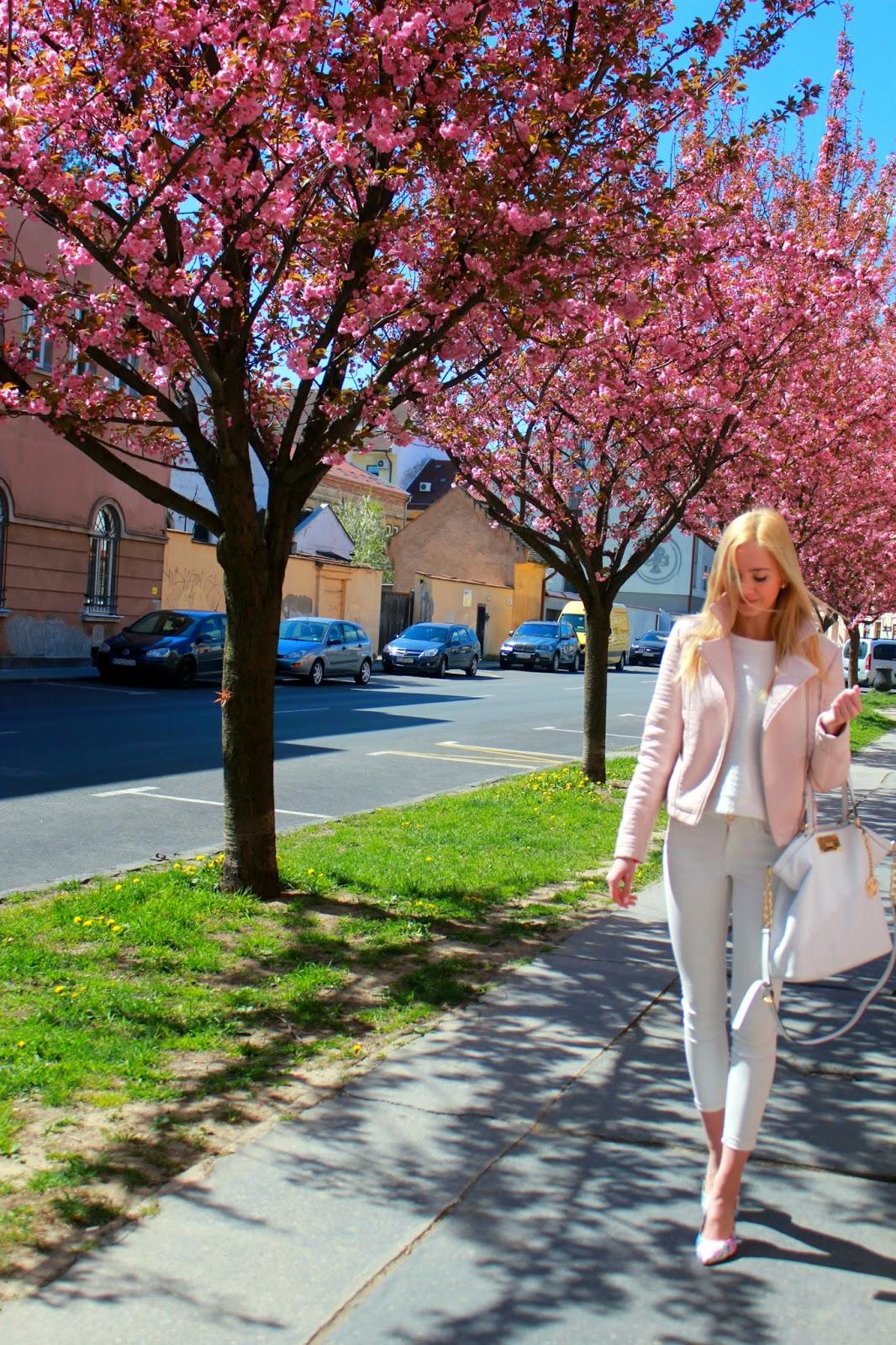 Cherry blossom ♥