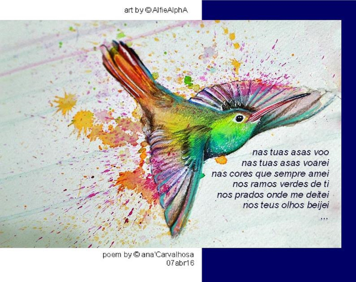 © ANA CARVALHOSA
