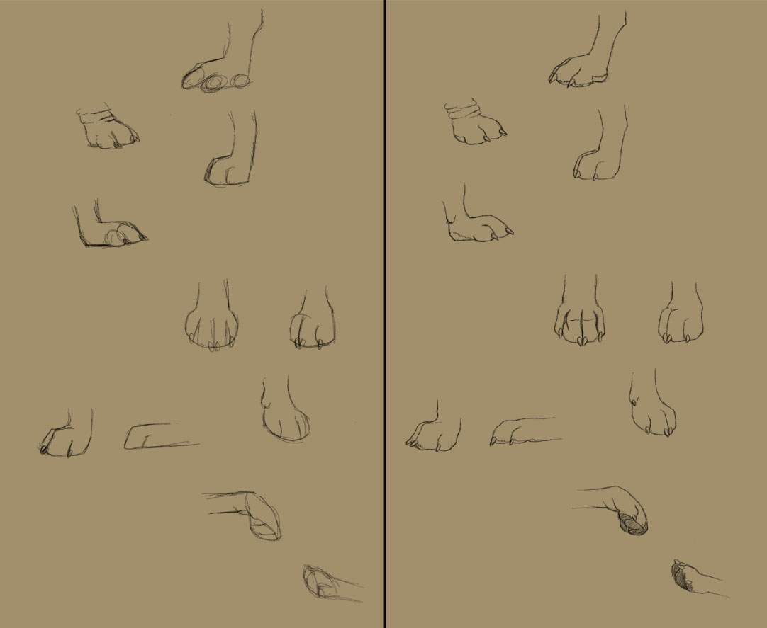 Savanna Williams: How to Draw Dogs: Paws, Eyes, and Noses