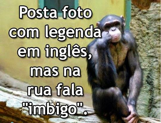 Primata Pensador Mundo Msf