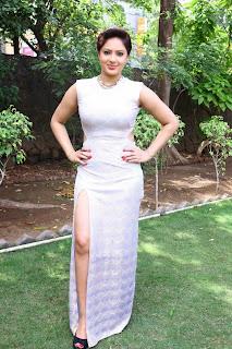 Actress Nikesha Patel  Pictures in Long Dress at Narathan Press Meet  7