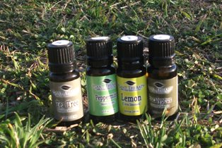 My Journey to Living Well Plant Therapy Essential Oil Review Homemade Cleaners