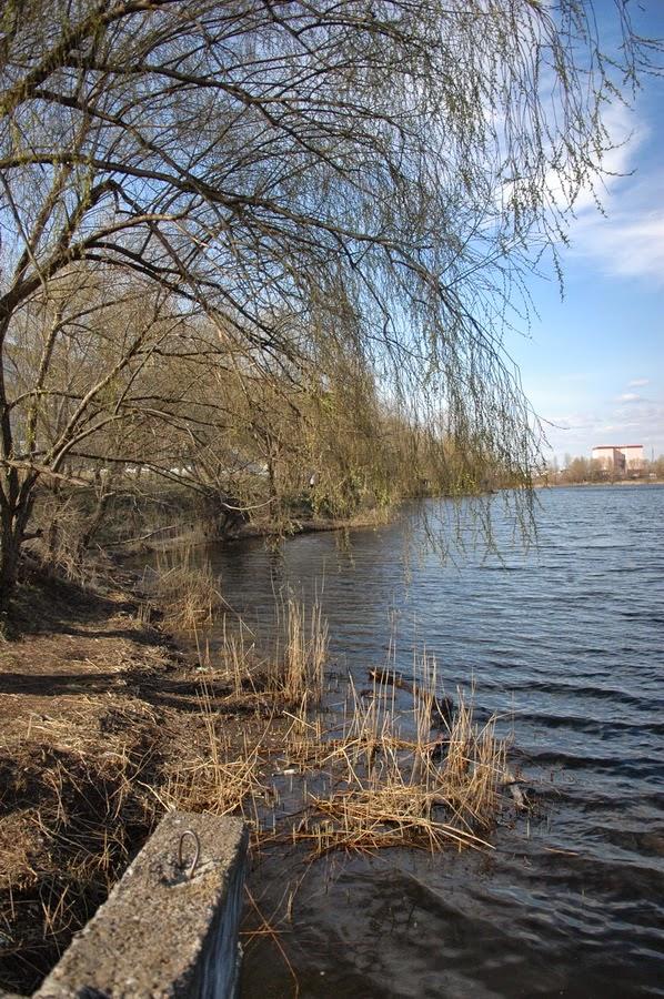 Фото Виталия Бабенко:Верхнее Выгуровское озеро
