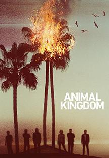 Vương Quốc Tội Phạm (2016) Animal Kingdom