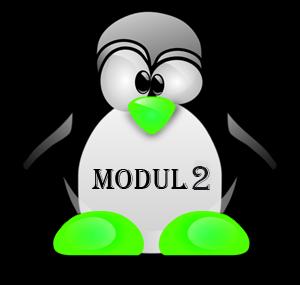 Perintah Dasar Linux Terlengkap - Modul 2