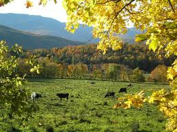 vermont natural beauty