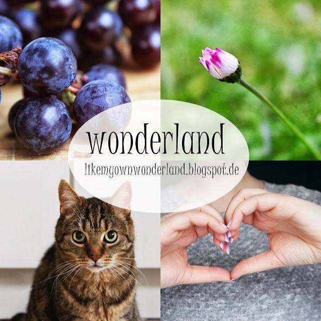 http://like-my-own-wonderland.blogspot.de/