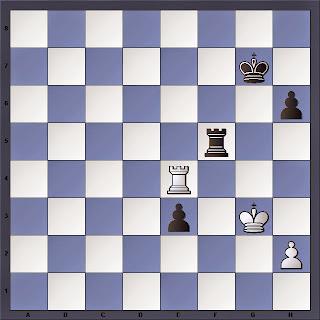 Échecs : Anand 1/2 Carlsen, la position finale de la partie 5