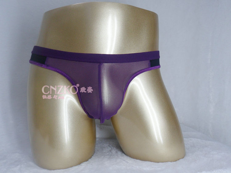 ... CARE 2U: UM376-3 Purple Sheer Front Brief Bikini Men's Underwear