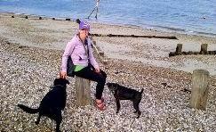 dog walker portsmouth, southsea, cosham & drayton