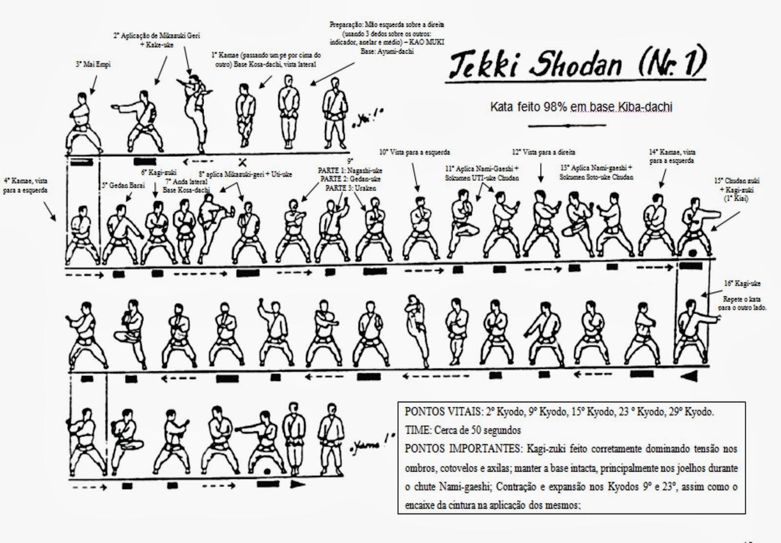 TEKKI SHODAN