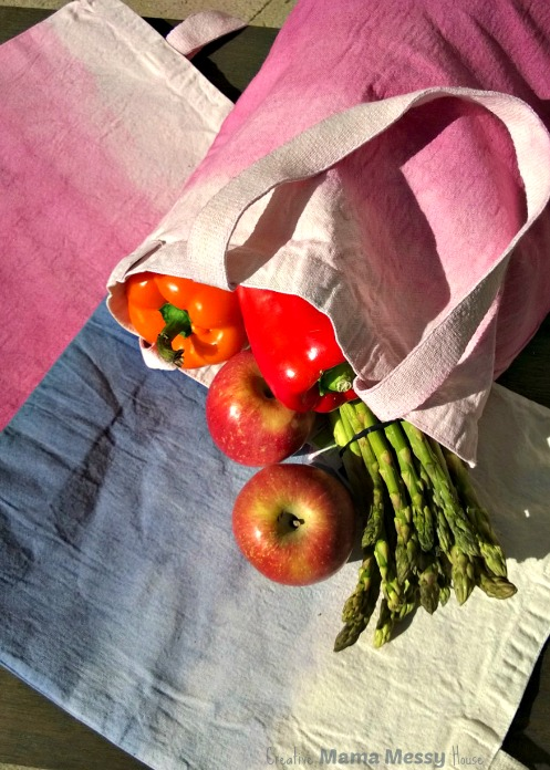 Don't pay for paper bags in the grocery stores! DIY Dip-Dyed Canvas Bags