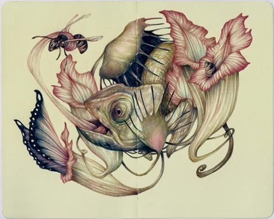 marco-mazzoni-illustrazioni-piante-carnivore