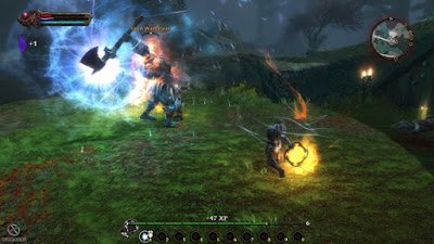 Koingdoms of Amalur Reckoning-SKIDROW TERBARU FOR PC screenshot 1