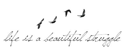 Life is a beautiful struggle...