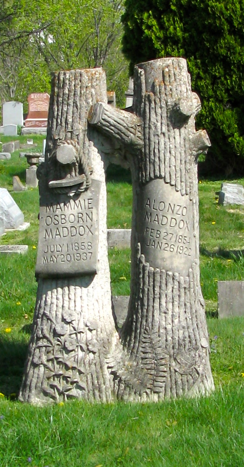 A Grave Interest Those Amazing Tree Stones