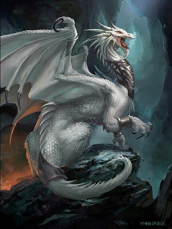 2 white dragon battle bilder land