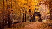 Lugar mágico lleno del color del otoño. Un lugar fantástico, que parece . lugar mã¡gico lleno del color del otoã±o