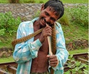 ular dimakan hidup-hidup