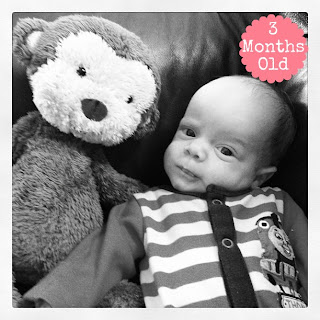 Dear Riley – 3 Months Old