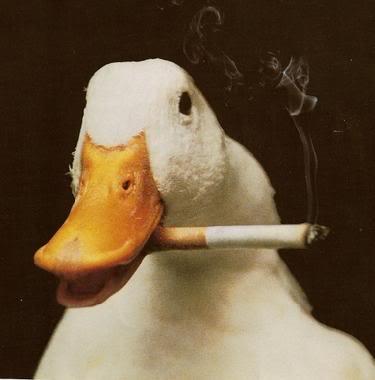 Funny smoking