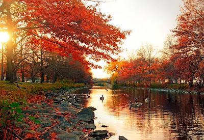 Postales de Otoño con el rio y un hermoso amanecer