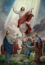 """Képtalálat a következőre: """"Jézus mennybemenetele evangélikus"""""""