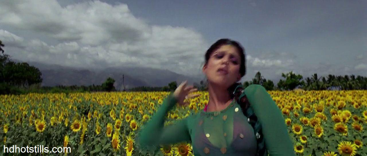 Hot Nayanthara Cleavage Show Photos From Villu