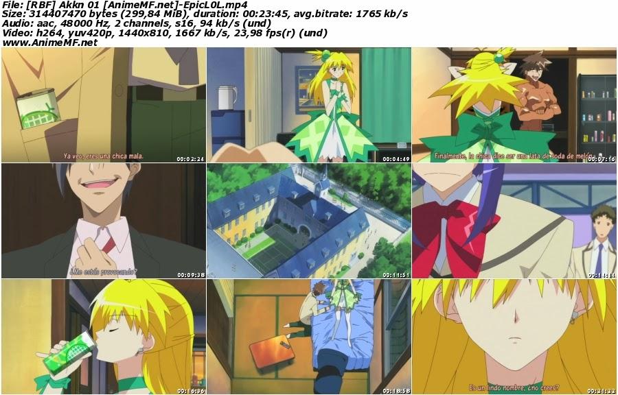 Descargar Akikan! en HD Sub Español MEGA