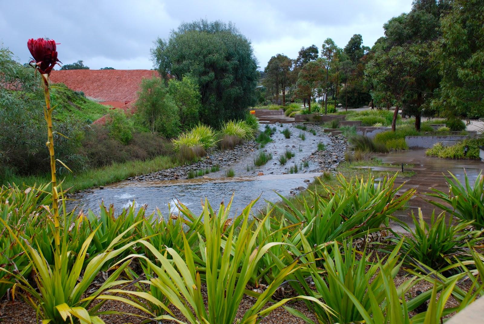walkabouters club of victoria inc  royal botanic gardens  cranbourne